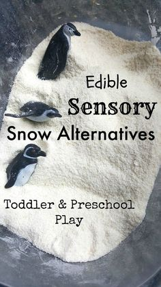 Edible non-toxic Snow Alternatives Sensory pretend play for toddler and preschool. GREAT ideas, gluten free options, and simple pour 1 ingredient ideas with no creating special DIY recipes. Edible Sensory Play, Sensory Boxes, Sensory Activities, Toddler Activities, Sensory Table, Winter Activities, Edible Slime, Sensory Diet, Learning Activities