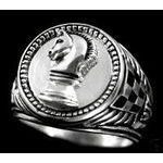 The Paladin...the ring that binds Jake and Simon Branson.