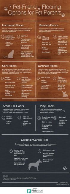 Today, we have teamed up with Wayfair to discuss Pet Friendly-Flooring Options for your home.