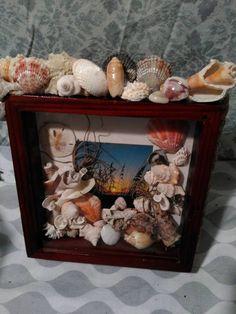 Florida sunset photo in sea shell shdow box frame by Rockscandywear on Etsy