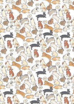 Soft Wallpaper, Wallpaper Iphone Cute, Cute Wallpapers, Wallpaper Backgrounds, Rabbit Drawing, Rabbit Art, Bunny Art, Animal Sketches, Aesthetic Art
