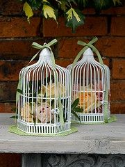 Birdcage centre pieces @Skye Deighton  these a nice and simple. incorporates the green and pink.