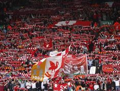 Mo Salah T shirt Egyptian King YNWA Liverpool Football Fans Lfc Cadeau Enfants TOP