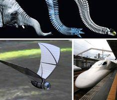 http://webecoist.momtastic.com/2011/01/14/brilliant-bio-design-14-animal-inspired-inventions/