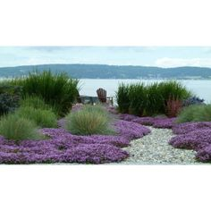 Seaside gardens can be the ultimate in soothing landscapes i... - Polyvore