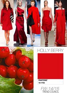 Pantone / Holly Berry / FW 2015