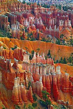 """Canyon Splendour"" - Peter Lik Bryce Canyon National Park, Utah, U. Peter Lik, Bryce Canyon, Canyon Utah, Grand Canyon, What A Wonderful World, Beautiful World, Beautiful Places, Places To Travel, Places To See"