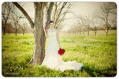 Photo by Fidelis Studio. Bridal portraits in the orchard at Royalty Pecan Farms.