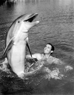 I loved Flipper...Flipper..faster than lightning, They call him Flipper, Flipper, faster than lightning, No-one you see, is smarter than he....