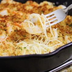 """""""This Parmesan-crusted shrimp scampi with pasta takes your basic scampi to the next level! This dish has everything you love about scampi and more. Shrimp Dishes, Fish Dishes, Shrimp Recipes, Fish Recipes, Pasta Dishes, Pasta Recipes, Cooking Recipes, Main Dishes, Recipes"""