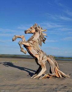Drift Wood Horse by Jeffro
