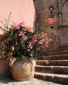 ℒa Vie en Provence