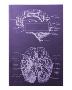 Anatomical Brain Screen Printed Softcover Notebook - Cognitive Surplus - 3