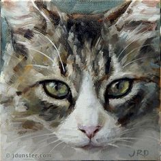 """Daily Paintworks - """"Pretty & Fluffy Kitty"""" - Original Fine Art for Sale - © J. Dunster"""