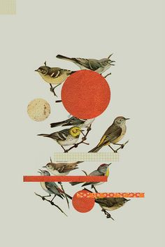 Bird by Humble Wonder, via Flickr with chiyogami