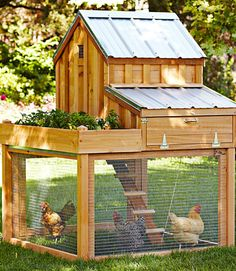 This $1,500 red cedar chicken coop from Williams-Sonoma performs double-duty by allowing you to grow herbs and vegetables in a raised garden attached to your hens' dwelling—a drainage system keeps water from falling into the run below.   - Veranda.com