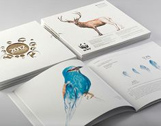2012 Annual report design theme of the customer-bank was dedicated to endangered species inhabited on the territory of Armenia for providing publicity to the country's nature conservation program jointly implemented with WWF.