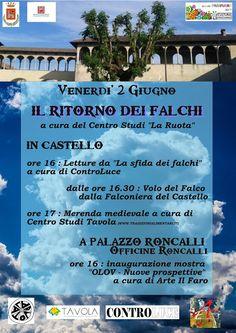 MedioEvo Weblog: Il ritorno dei Falchi al castello di Vigevano