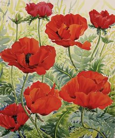 Large Red Poppies Painting by Christopher Ryland
