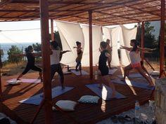 8 Days Forrest Yoga Retreat in Greece - BookYogaRetreats.com