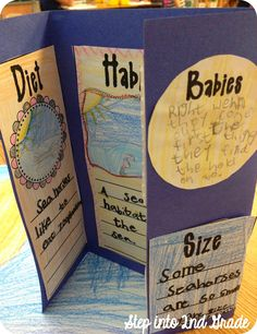 Adding this as a culminating project for our Non-fiction Reading Unit, easy, fun, and a freebie! This is a great way to incorporate science and reading. Second Grade Science, 2nd Grade Ela, First Grade Writing, 2nd Grade Reading, Third Grade, Science Classroom, Teaching Science, Science Activities, Science Ideas