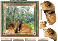 lions sleeps tonight on Craftsuprint