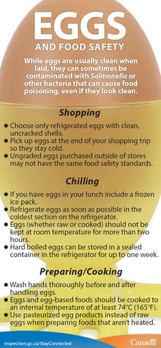 Eggs provide essential nutrients that are part of a healthy diet. But like all foods, they should be produced, handled, and prepared with care to minimize the risk of food poisoning. Food Safety Tips, Food Poisoning, Healthy Eating Recipes, Kids Nutrition, Eggs, Diet, Php, Homemade, Kitchen