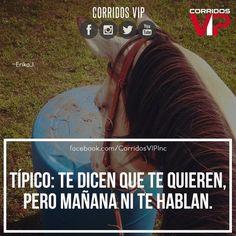 Típico.!   ____________________ #teamcorridosvip #corridosvip #corridosybanda #corridos #quotes #regionalmexicano #frasesvip #promotion #promo #corridosgram