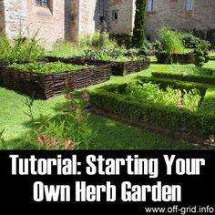 Tutorial- Starting Your Own Herb Garden