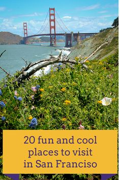20 cool, unusual and fun activities and places to visit in San Francisco  http://travelphotodiscovery.com/20-quirky-fun-and-trendy-places-to-explore-in-san-francisco/