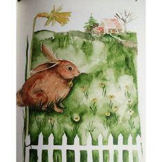 Bir ressamın bahçe güncesi iki,  çiftlerin arkasındaki tavşan #birressamınbahçegüncesi2 #işkültüryayinlari #diary #günce #bahceguncesi #animals #gardener #garden
