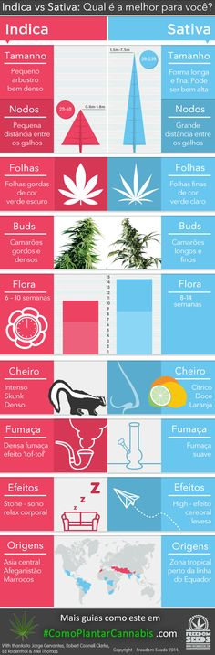 indica-vs-sativa-infographic.jpg