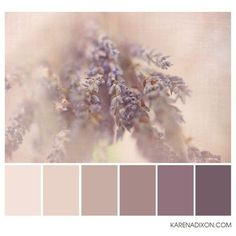 flora tones ❤️ liked on Polyvore featuring home, home decor, color palettes and floral home decor