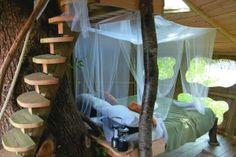 #tree house