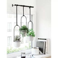 Triflora 3 - Piece Hanging Planter