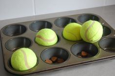 Muffin Tin Treat Puzzle - a great DIY treat challenge. Paved by Paw Prints