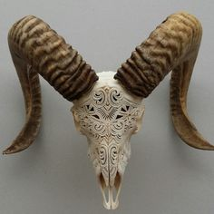 Image of Carved Ram Skull mhendi