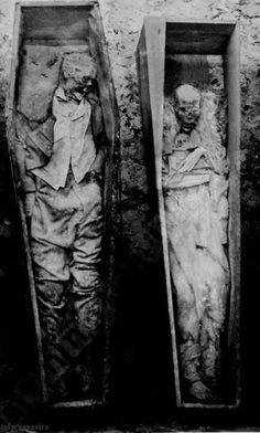 Decaying bodies, surviving love. #DecayOfCivilization