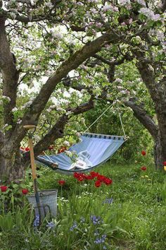 ofmessandglory: countrynest: Old orchard and a hammock… I can see myself there! ofmessandglory: countrynest: Old orchard and a hammock… I can see myself there Country Life, Country Living, Country Charm, Garden Cottage, Home And Garden, Garden Living, Garden Nook, Cacti Garden, Garden Oasis