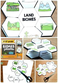 2 differentiated biomes foldables your students will LOVE ! These biomes foldabl. Science Resources, Science Lessons, Science Projects, Science Activities, Life Science, School Projects, Rainforest Activities, Third Grade Science, Middle School Science