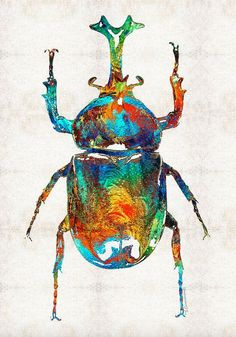 Colorful Beetle Scarab Art Bug Egyptian Print From Painting - Colorful Beetle Scarab Art Bug Egyptian Print From Painting Symbol Primary Color Large Big Canvas Rainbow Insect Artwork Egypt Hieroglyphics Febrero De Colorful Beetle Art Scarab Beauty By Egyptian Symbols, Egyptian Art, Bug Art, Large Artwork, Insect Art, Beetle Insect, Beautiful Bugs, Feather Art, Painting Collage