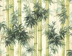 We source and supply beautiful, high-end wallpapers and wall coverings for home and commercial use. Bamboo Wallpaper, Teal Wallpaper, Watercolor Wallpaper, Wallpaper Samples, Home Wallpaper, Wallpaper Roll, Beautiful Wallpaper, Wallpaper Ideas, Painted Bamboo