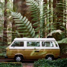 Green camper van. #KONI #KONIImproved #KONIExperience