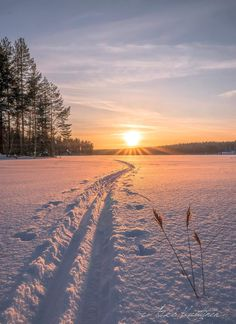 Cross country skiing at sunrise! Winter Magic, Winter Snow, Winter Road, Winter Photography, Nature Photography, Travel Photography, Beautiful World, Beautiful Places, Winter Scenery