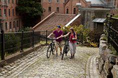 Fiordo de Oslo: En bicicleta a tu aire - Camino En Bici Fiordo De Oslo, Forests, Norway, Log Homes, Drive Way, Bicycles, Scenery, Pictures