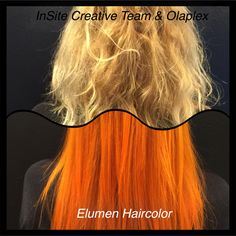 OLAPLEX & Elumen by InSite Creative Team  www.saloninsite.dk