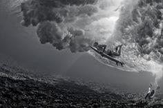 944_1resized___underwater_web_site_00024.jpg (1800×1200)