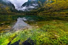 Only the Wind Can Find the Way - Jiuzhaigou National Park