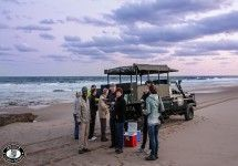 Turtle Tours near St Lucia in the iSimangaliso Wetland Park with Heritage Tours - South Africa