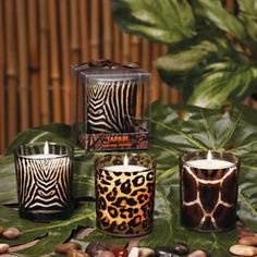 Safari Animal Print Candles | KGrHqF,!lsE8FszzOC9BPK0nPN1Fg~~60_35.JPG